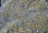 鉛重石(PbWo4) タングステンの鉱石