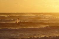 強風の中をウインドサーフィンを楽しむ