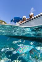 小笠原の海域公園でボートから魚に餌付けする親子