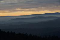 バヴァリアの森の夕暮れ 32284002448  写真素材・ストックフォト・画像・イラスト素材 アマナイメージズ