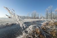 凍った小川の風景