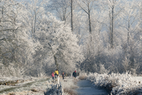 凍った小川沿いに散歩する家族