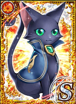 黒猫の画像 p1_14