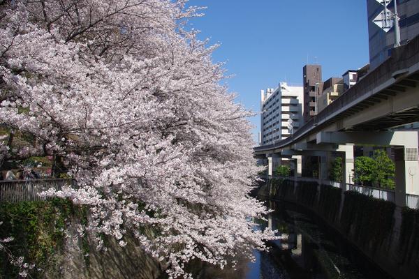 edogawa_park008