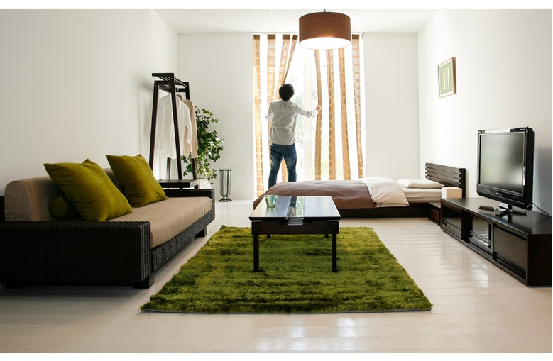 インテリア 家具 背の低い家具