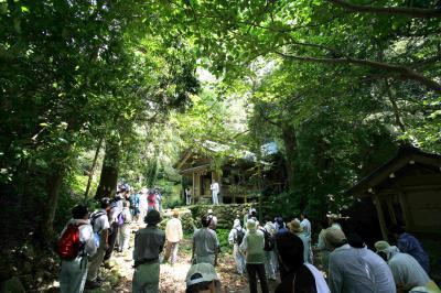 沖ノ島の画像 p1_21