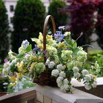 お花をさらに美しく!知って得するフラワーアレンジメントの作り方のサムネイル画像