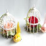 インテリアにおしゃれな鳥かごを!ディスプレイやガーデニングにのサムネイル画像
