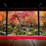 カップルで行きたい!京都のおすすめデート・観光スポットをご紹介!のサムネイル画像