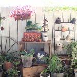 可愛い庭で和みのひとときを。素敵な庭づくりのヒントを紹介しますのサムネイル画像