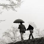 福岡で雨の日デートをするなら?おすすめスポット6選を公開中!のサムネイル画像