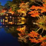 琵琶湖だけではない。滋賀県のおすすめデートスポットのご紹介。のサムネイル画像
