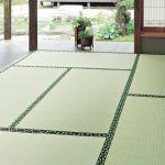 【畳の基本的な掃除方法】もしもカビが生えた時の掃除方法などのサムネイル画像