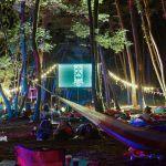 """なんと場所は""""森の中""""。大自然に囲まれた映画祭に行ってみない?のサムネイル画像"""