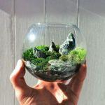 癒しの世界♡緑の溢れる苔庭で究極のリラックス効果を体験しようのサムネイル画像