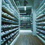 カジュアルコーデ好きな人おすすめ!スニーカーの専門店をご紹介のサムネイル画像