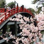 叶えたい恋をしている人に!大阪で行ける縁結びと恋のパワースポットのサムネイル画像