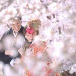 [4/1-15]桜も恋も満開♡《恋愛運ランキング》第1位は蟹座!4/3以降に期待大◎のサムネイル画像