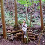 最近ストレスに悩まされているなら。心と体を癒す《森林浴のすすめ》のサムネイル画像