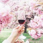 6月2日はイタリアワインの日!覚えておきたい《ワイン》知識&マナーのサムネイル画像
