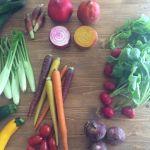 美の栄養がギュギュっと詰まった《夏野菜》を食べて美しくなろう♡のサムネイル画像