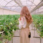 美容の為に、野菜を食べよう♡《渋谷、表参道》サラダ専門店のサムネイル画像