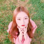 夏の乾燥肌をやっつけろ!韓国おすすめ#スリーピングパック3選!のサムネイル画像