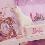 猫ちゃんだってInstagramする時代♡お洒落《にゃんすたグラマー》!のサムネイル画像