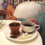甘い雨が降りそそぐ!?京都で話題の【雲下コーヒー】って?のサムネイル画像