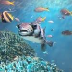天空のオアシスで癒されちゃお♪ 【サンシャイン水族館】まとめ♡のサムネイル画像