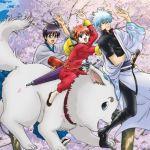 【少年ジャンプ人気漫画】銀魂のキャラクターをまとめてみたのサムネイル画像