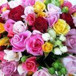 花束をプレゼント!でも値段ってどのくらい?高いほうがいい?のサムネイル画像