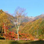 秋がどんどん深まって 辺りは秋色 そんな秋の景色を歌った童謡をのサムネイル画像