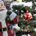 もうすぐクリスマス!意外と面白いルーツや由来をまとめてみた!のサムネイル画像