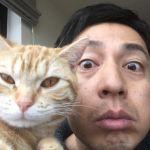徳井義実の猫への愛がすごい!愛情が深すぎるせいでSNSが炎上?のサムネイル画像