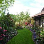 【まるで絵本の挿絵】見ているだけで癒されるおしゃれな洋風の庭のサムネイル画像