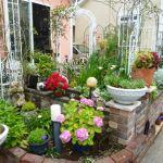 狭い庭でもガーデニングは楽しめる!素敵なガーデニングのデザイン集のサムネイル画像