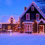 クリスマスのガーデニングはイルミネーションで華やかに飾ろう♪のサムネイル画像