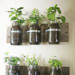 ひと手間かけてよりオシャレに☆観葉植物をDIYしてみよう!!のサムネイル画像