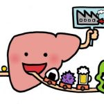 中年に多い!脂肪肝を改善するのに効果のある食事レシピまとめ★のサムネイル画像