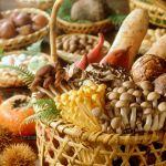 季節を先取り!美容・健康にも良い栄養素たっぷりの秋野菜と冬野菜!のサムネイル画像