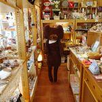 名古屋の雑貨好き女子は要チェック!名古屋の雑貨屋情報まとめのサムネイル画像