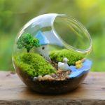 小さなグリーンインテリア、魅惑の『瓶×テラリウム』の世界のサムネイル画像