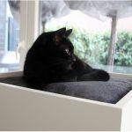 可愛い愛猫のために選びたい♡据え置きタイプのキャットタワーのサムネイル画像