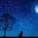 夜空がきれいな冬だから!便利で楽しい星座アプリで星空散歩☆彡のサムネイル画像