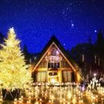 あなたは、あの懐かしのクリスマスゲームをいくつ覚えていますか?のサムネイル画像