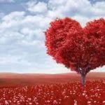 なるほどっ!いまどきのバレンタインのあれこれランキング!のサムネイル画像