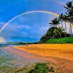 こだわりの新婚旅行ならやっぱり「楽しい」「安全」ハワイが最高!のサムネイル画像
