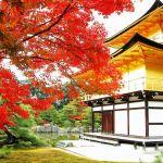 2人っきりの京都旅行!とっておきのおすすめデートコースはココ!のサムネイル画像