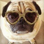 脱ダサ!!自分に合ったUVカットサングラスを選んで夏を楽しもう☆のサムネイル画像